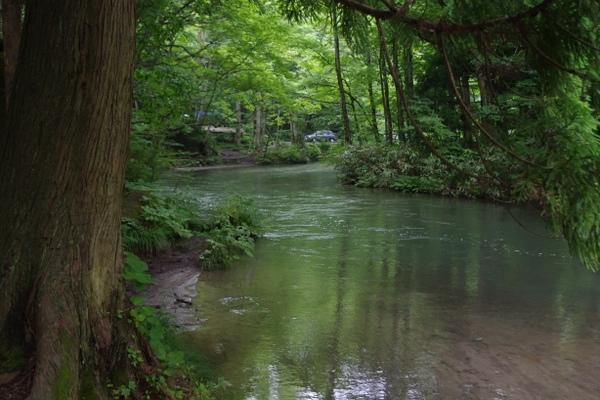 """接下來是""""日本一""""奧入瀨溪流的美照啦!!"""