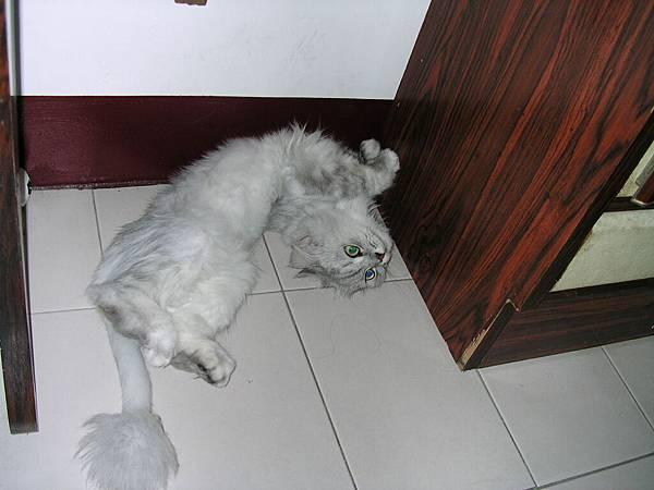 妹是睡到扭扭扭