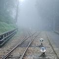 遠方還是霧