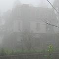 在霧中的緩慢