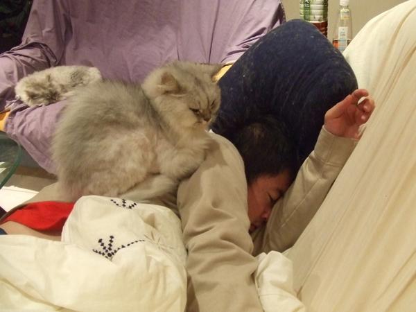 很可愛耶~因為爺爺把她的沙發佔滿了~