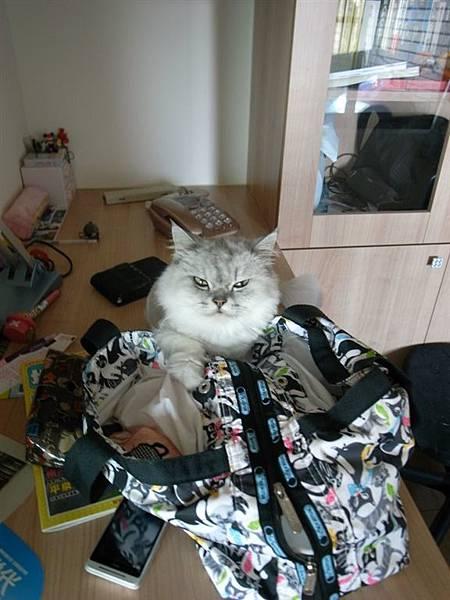 是要給媽媽裝到包包去上班嗎~