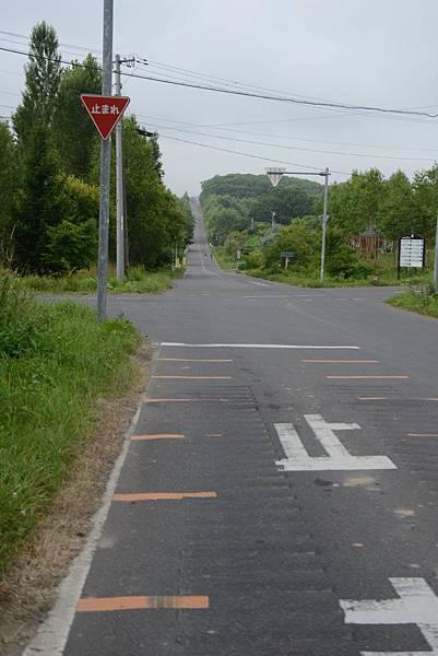 老大這次學會的日文,開車看到一定要停