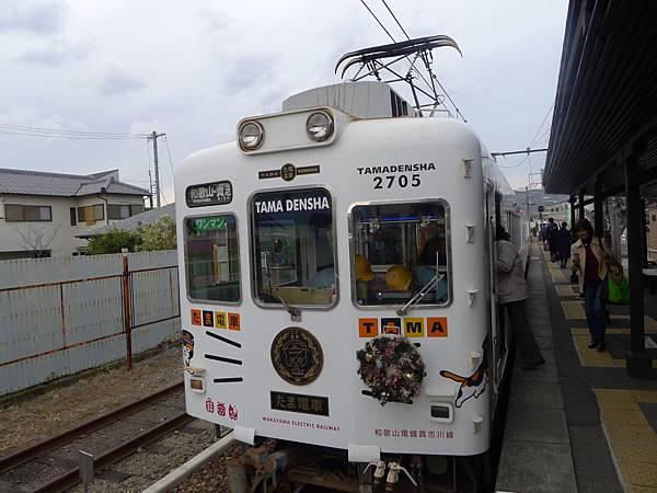 我們回程的貓咪列車來囉~