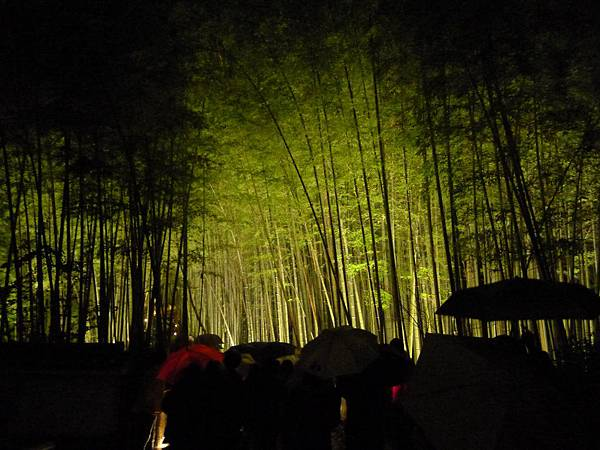 過野宮神社就是一大片的點燈了~