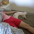 卡妞也給我靠著睡,我好幸福~