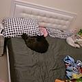 黑皮搶老大位,我跟卡妞睡..老大去睡地板吧~