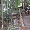 這邊還是要爬一段階梯
