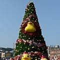 小鴨耶誕樹~