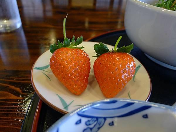 又勾起我的草莓魂了~