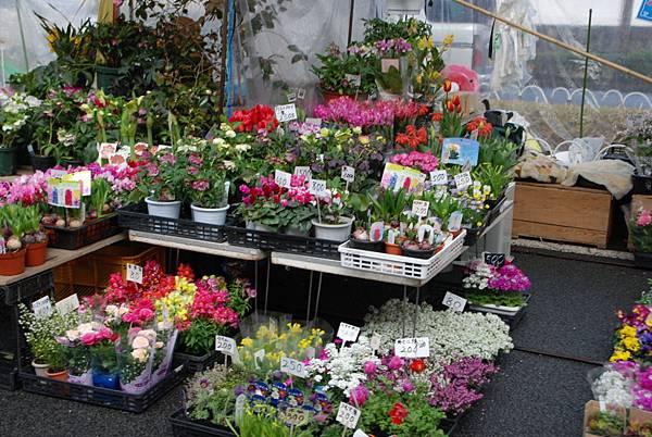 還有賣花~