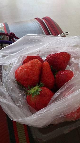 第三盒草莓~好好吃呀~