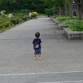 到京都鐵道博物館~