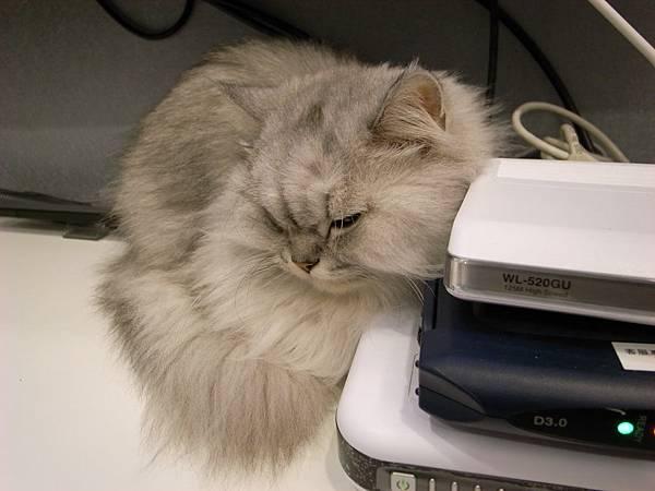 有沒有~卡妞把電器當枕頭躺了~~