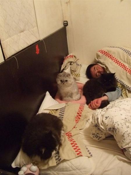 我家晚上睡覺都很擠