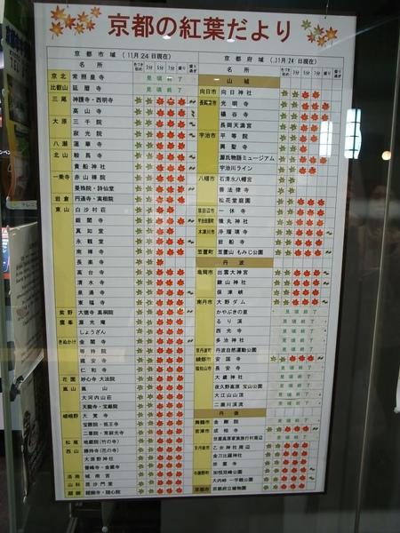京都車站的觀光center有楓葉情報~