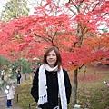東福寺的庭園可以走進去~