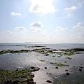 澎湖遊 (250)