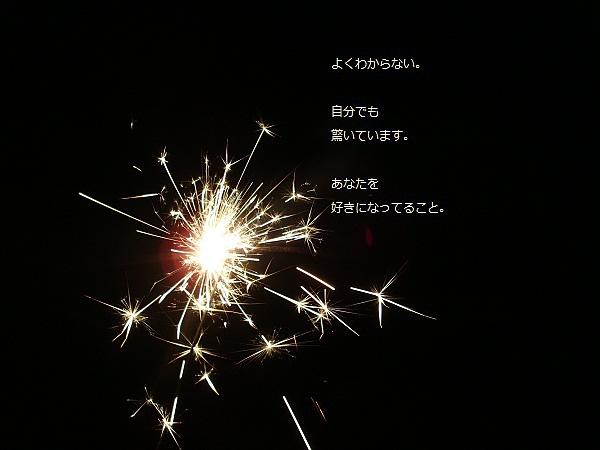 DSC098951.jpg