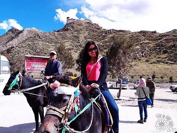 09-2 西藏雍布拉康.JPG