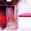14-西藏 僧人(喇嘛).JPG