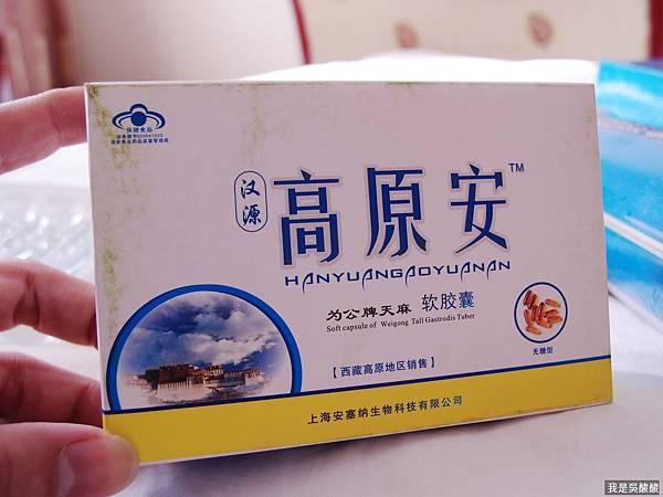 05-我的高原反應,我的西藏行