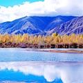 35-我的高原反應,我的西藏行