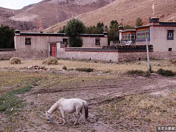 06-酸酸遊西藏 318國道 前往定日