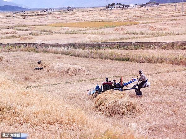 24-酸酸遊西藏 318國道 前往定日