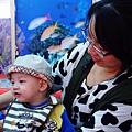 22-布袋漁港吃海鮮