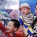23-布袋漁港吃海鮮