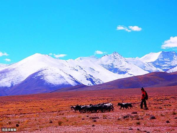 08-從珠峰返回日喀則途中