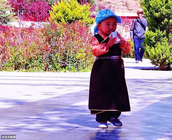 05-西藏拉薩布達拉宮