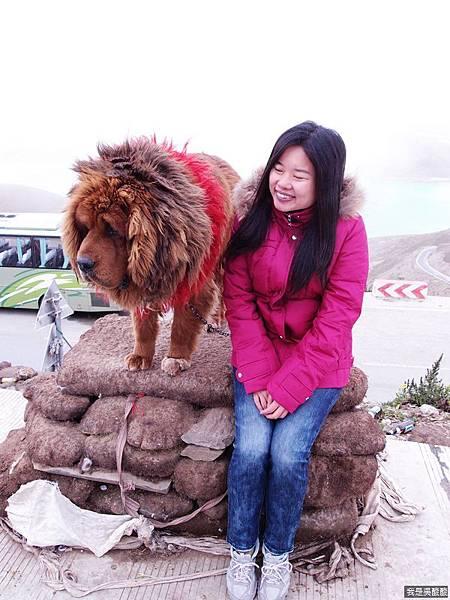 28-西藏羊卓雍措(我是吳酸酸)