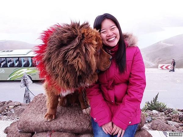 29-西藏羊卓雍措(我是吳酸酸)