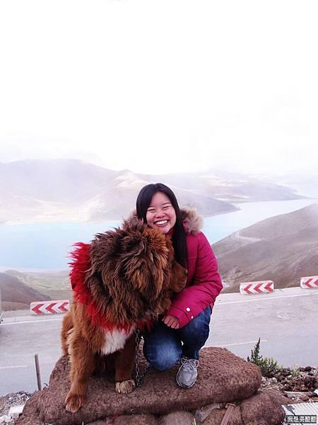 30-西藏羊卓雍措(我是吳酸酸)