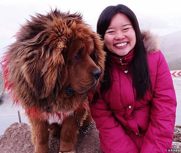 31-西藏羊卓雍措(我是吳酸酸)