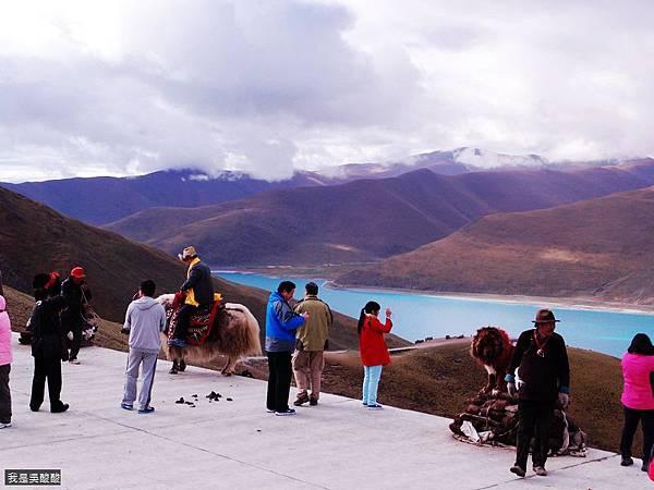 43-西藏羊卓雍措(我是吳酸酸)