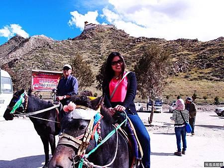 07-西藏 雍布拉康(我是吳酸酸)