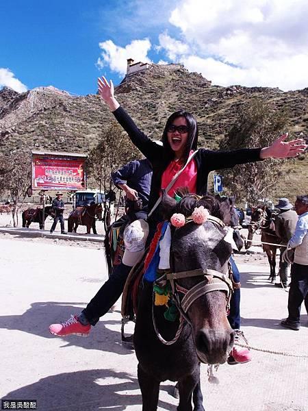 09-西藏 雍布拉康(我是吳酸酸)