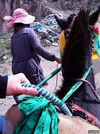 22-西藏 雍布拉康(我是吳酸酸)