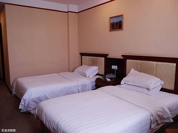 10-西藏拉薩 殿影酒店