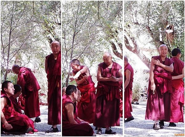 80-西藏拉薩 色拉寺辯經 (我是吳酸酸)