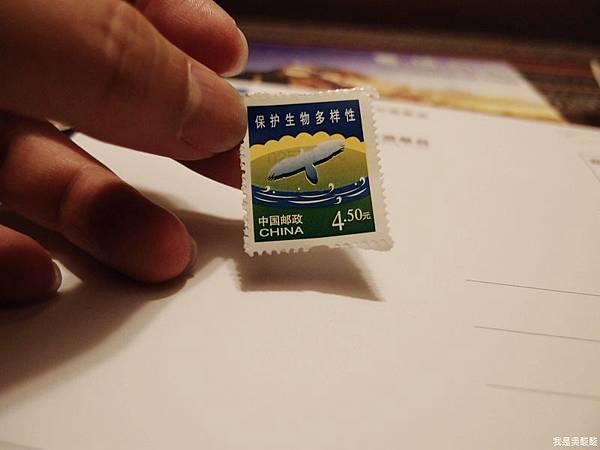 07-西藏 寄明信片(我是吳酸酸)
