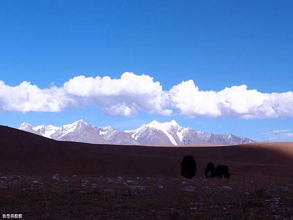 59-西藏拉薩風光 前往納木措途中(我是吳酸酸)