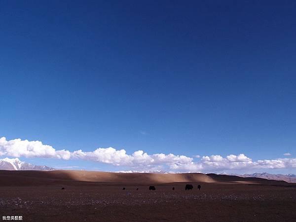 60-西藏拉薩風光 前往納木措途中(我是吳酸酸)
