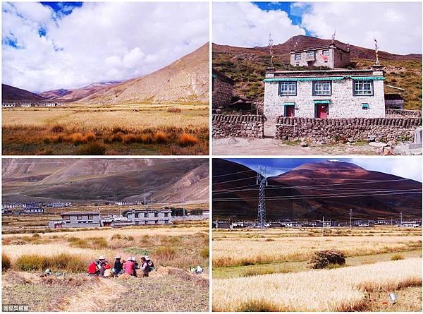 03-西藏日喀則(我是吳酸酸)