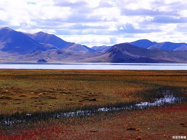 06-西藏日喀則(我是吳酸酸)