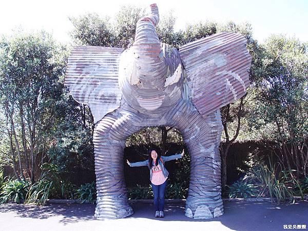 83-紐西蘭奧克蘭動物園