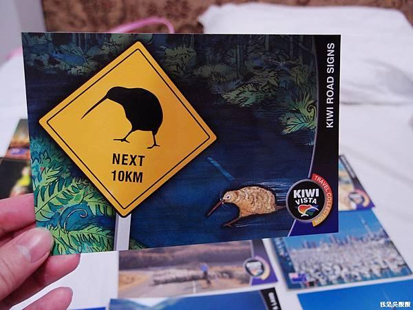 126-紐西蘭寫明信片